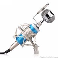 Micro thu âm BM-8000 dùng cho Máy tính, Điện thoại hát Karaoke chuyên nghiệp